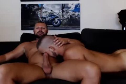 young Bear Sucks A old Bears penis Live On Cruisingcams Com
